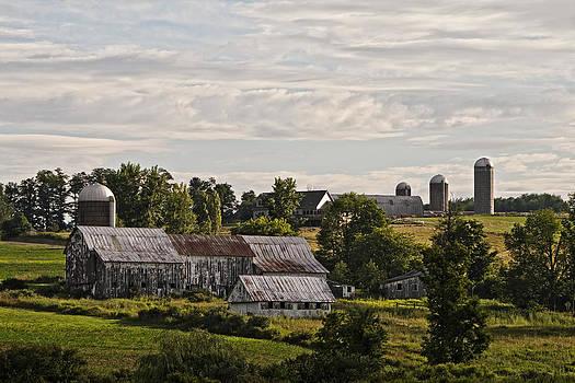 Cadis Farm by Frank Morales Jr