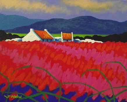 Cadmium Meadow by John  Nolan