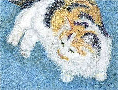 Calico Cat by Karen Curley