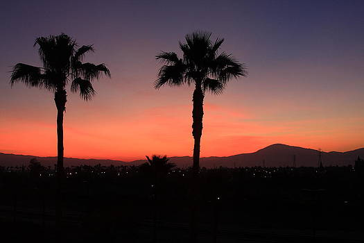 California Dreamin by Lyle Hatch