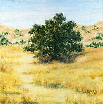 California Oak by Colleen Ward