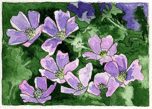 Callirhoe by Eunice Olson