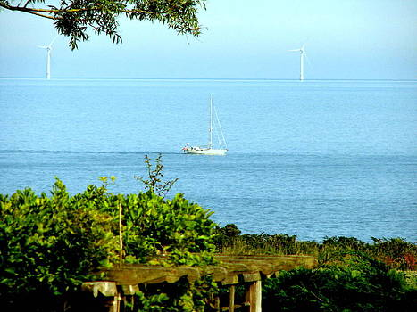 Joseph Doyle - Calm evening yachting