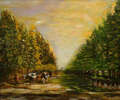 Camino Rural by Joel Vargas
