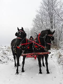 Peggy  McDonald - Canadian Team in a Winter Wonderland