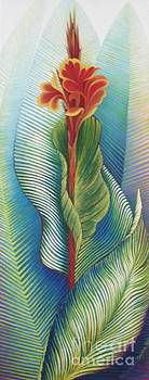 Canna Striata by Barbara Anna Cichocka