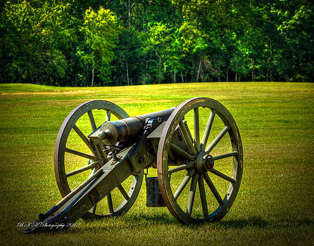 Cannon  by Bobby Martin