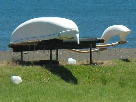 Canoe Beach Hilo Bay by Ron Holiday Broomell