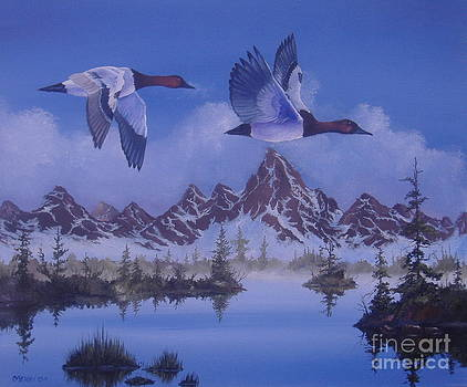 Canvasbacks by Michael Allen