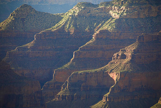Canyon Splendor by Cindy Rubin