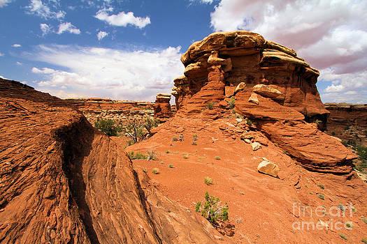 Adam Jewell - Canyonlands Textures
