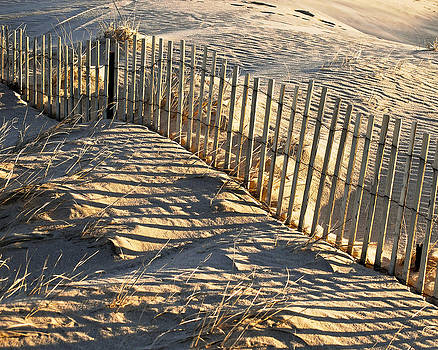 Cape Cod Beach Fence by Peggie Strachan