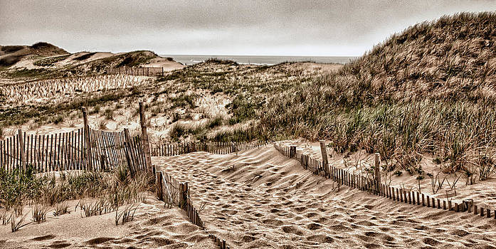 Fred LeBlanc - Cape Cod Dunes