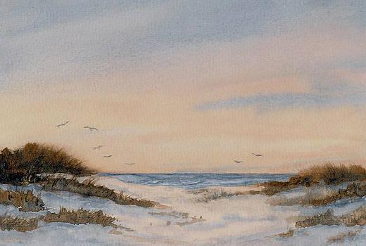 Cape Cod Evening Flight by Vikki Bouffard