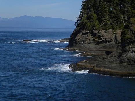 Cape Flattery Cliffs by Wanda Jesfield