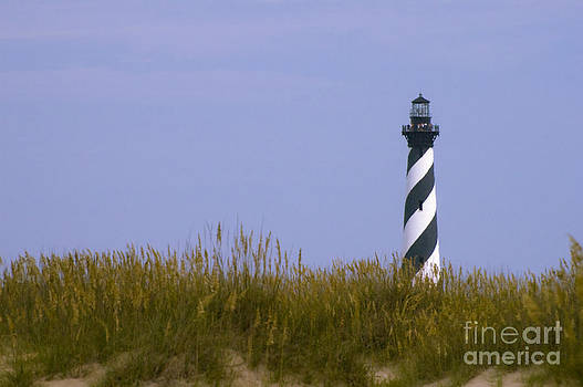Tim Mulina - Cape Hatteras Lighthouse and Seagrass