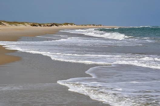 Cape Lookout Beach by Jeff Moose