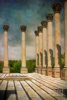 Capitol Columns Three by Susan Isakson