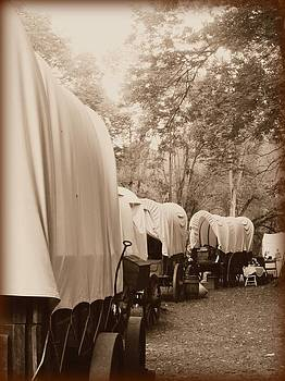 Caravan by Andrea Dale