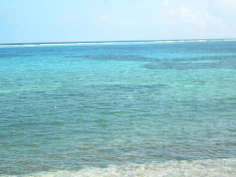 Stacey Robinson - Caribbean Blue
