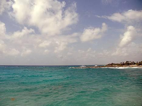 Caribbean Costa Maya by Riley Geddings