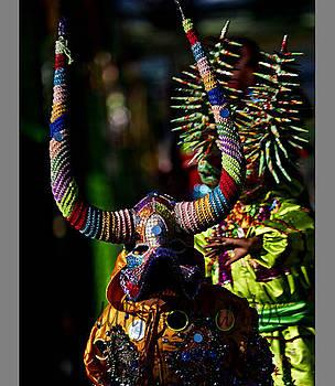 Carnaval by Juan j De los santos