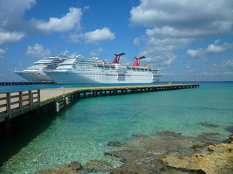 Carnival Cruises by Mary McGrath