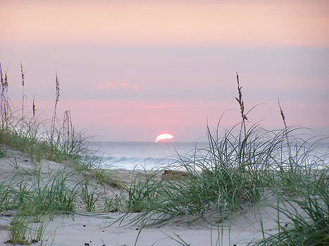 Carolina Pastel Sunrise by Jeremy Allen