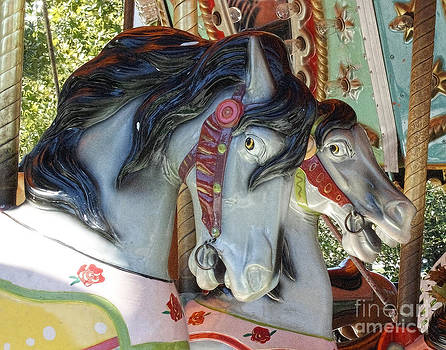 Carousel Horses by Bruce Wood
