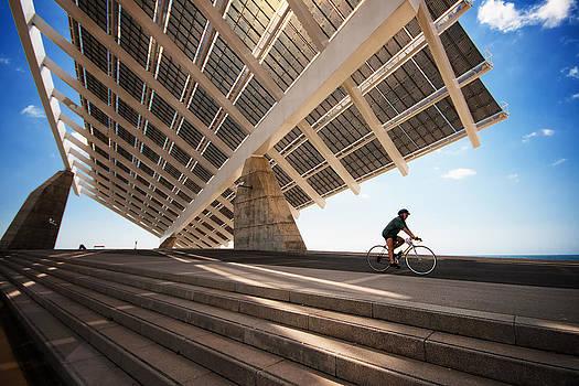 Carpet for the Sun by Franco Farina