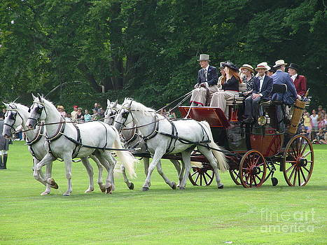 Carriage Driving by Corrie McDermott