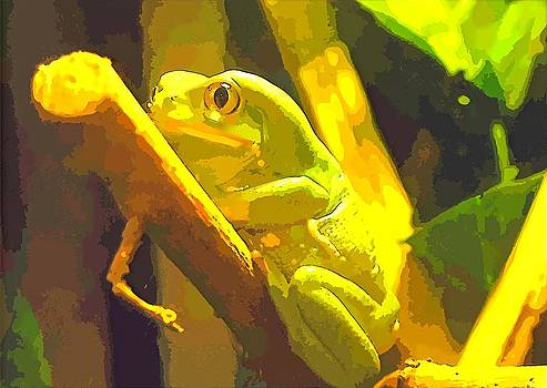 Tammy Bullard - Cartoon Frog
