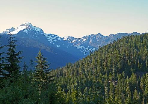Cascade Summer Afternoon by Seth Shotwell