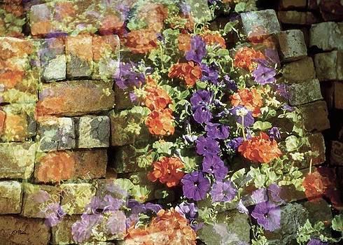 John Neville Cohen - Cascading Flowers