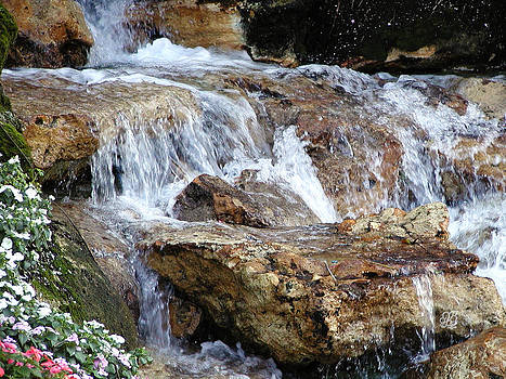 Cascading Water by Barbara Middleton