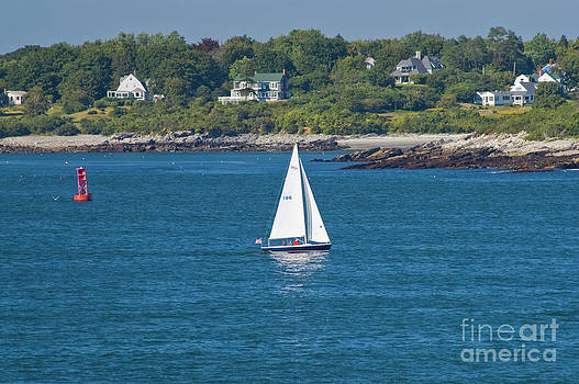 Tim Mulina - Casco Bay Sailboat