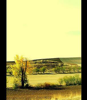 Castilla La Mancha Spain by Guadalupe Nicole Barrionuevo
