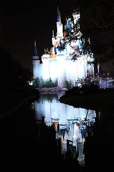 Castle Reflection by Shweta Singh