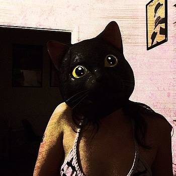 #cat #mask #grunge #art #picoftheday by Joe Pardo
