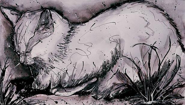 Cat Napping by Theresa Arts
