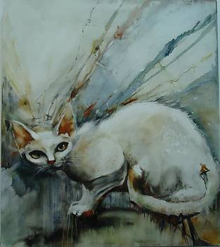 Catnip by Caroline Anne Du Toit