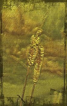 Cattails by Sandy Mallet