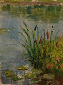Cattails by Tom Martino