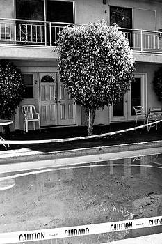 William Dey - CAUTION Palm Springs