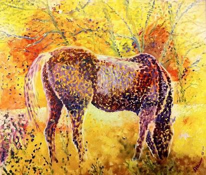 Cavallo Al Pascolo by B Russo