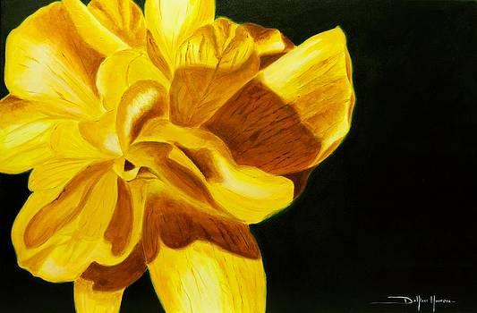 Cayena Amarilla by Dahiana Herrera
