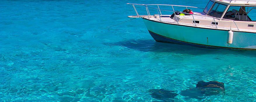Stacey Robinson - Cayman Stingrays