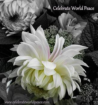 Celebrate World Peace by Sian Lindemann