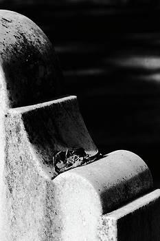 Cemetery Stone by Sandi Blood