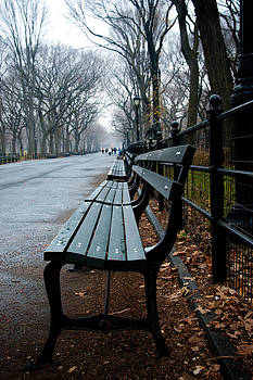 Central Park Bench by Heidi Reyher